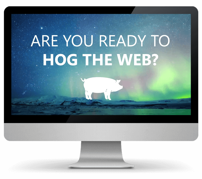Hog The Web Provides unrivaled WordPress services