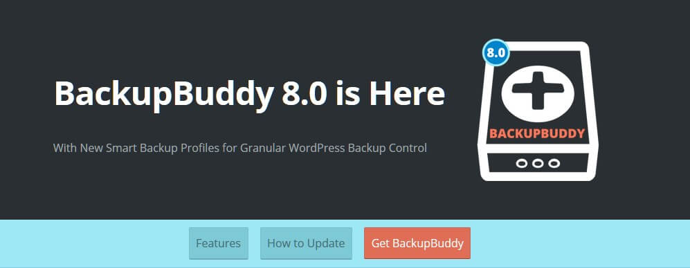 BackUp Buddy for WordPress